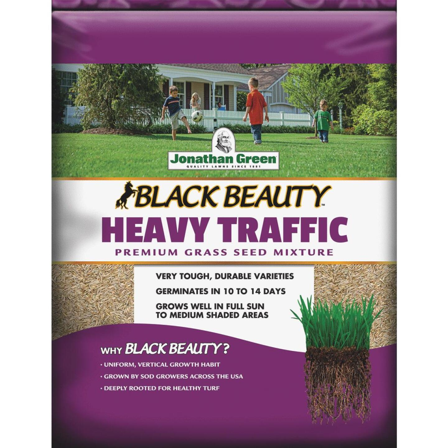 Jonathan Green Black Beauty 3 Lb. 600 Sq. Ft. Coverage High Traffic Grass Seed Image 1